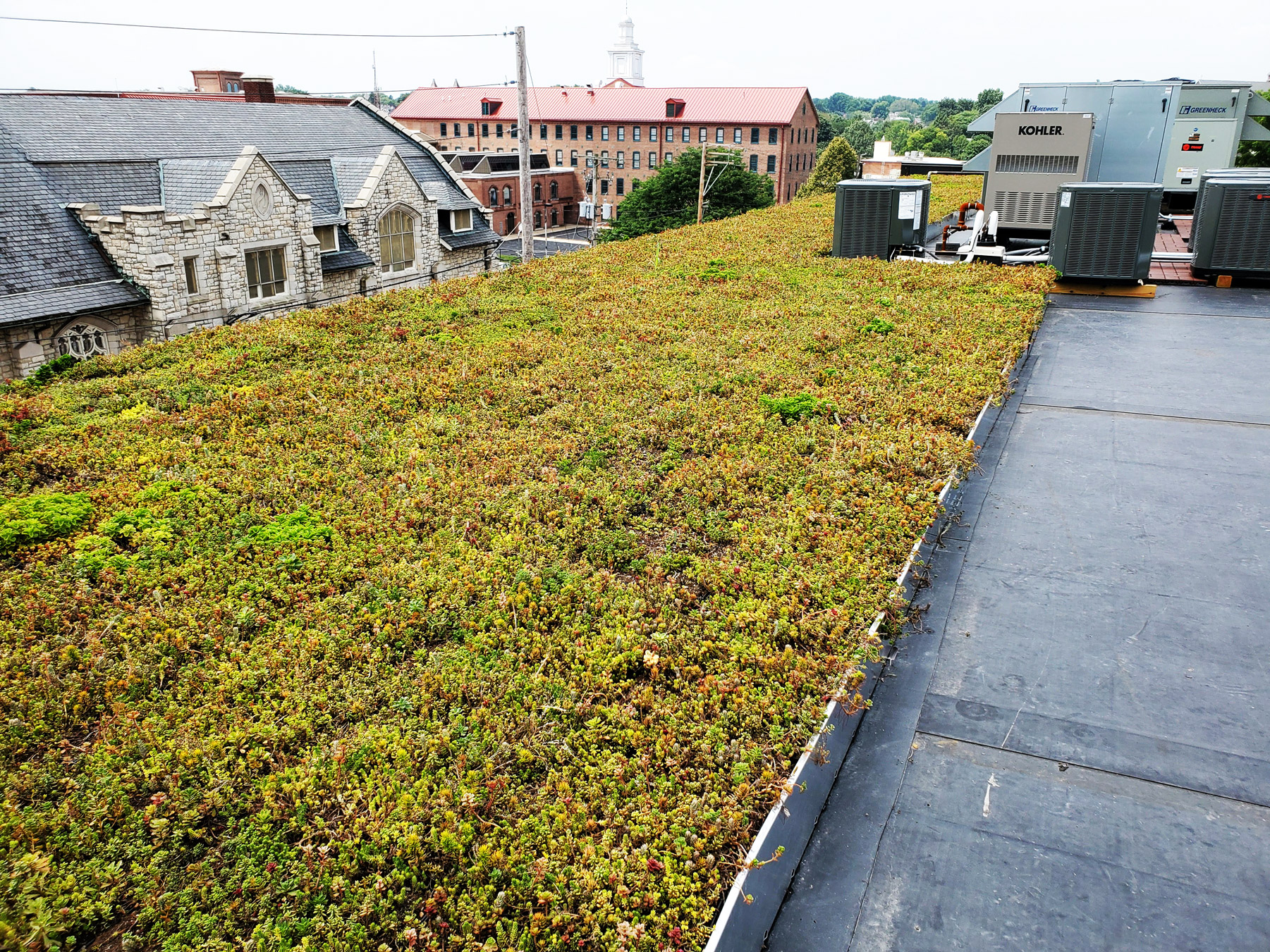 LEEC Lancaster Early Education Center's Green Roof! One of the only in Lancaster, PA! Creating Sustainability
